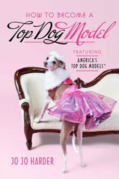 Become a Top Dog Model